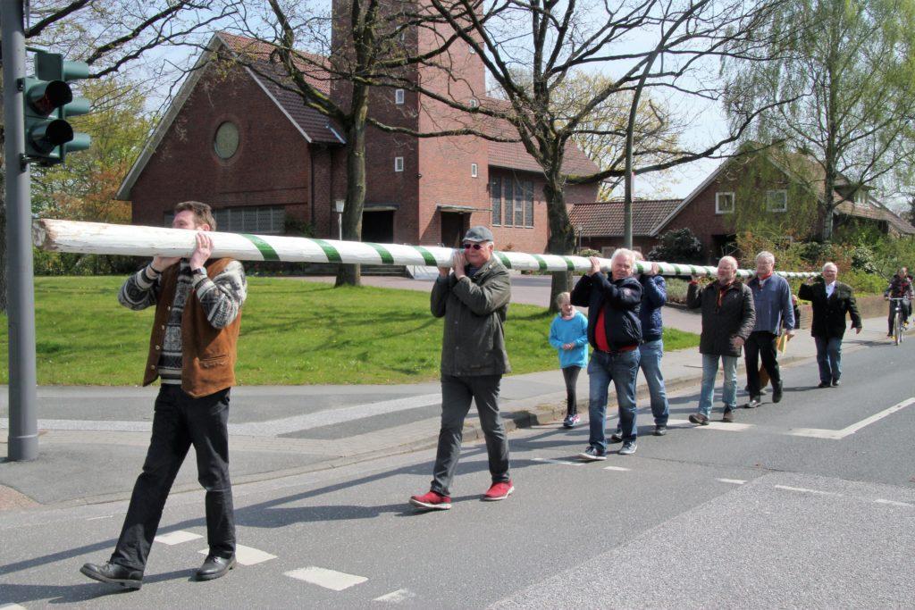 Die Knopfsergeanten Vereinigung der Marmstorfer Schützen beim Maibaum tragen.